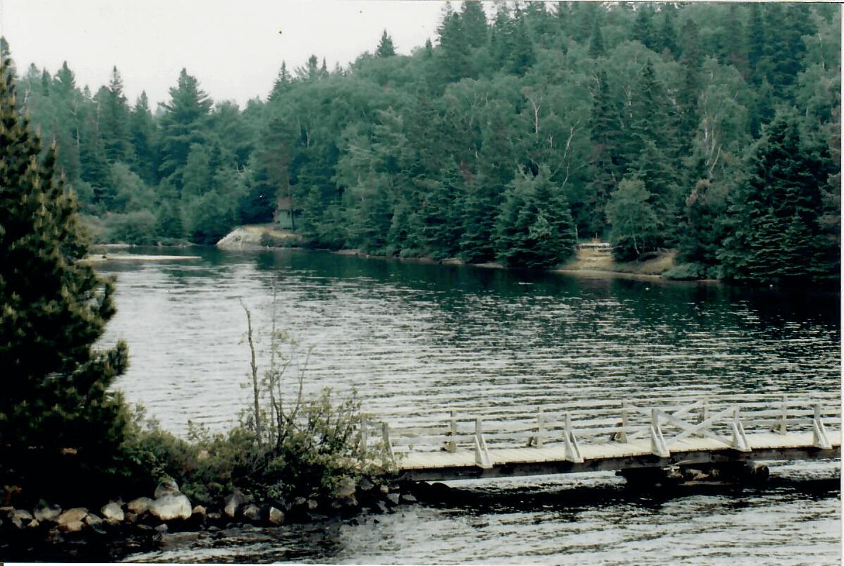 At Ahmek looking down to the bottom of Pioneer Bay, Canoe Lake.